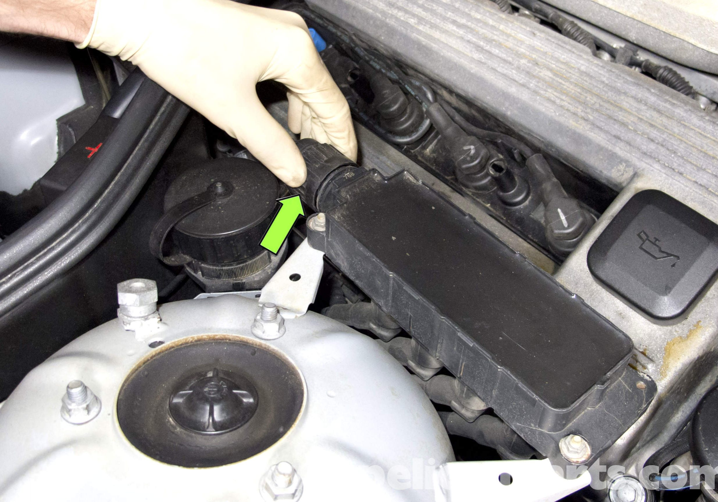 spark plugs and ignition coils services Jacksonville